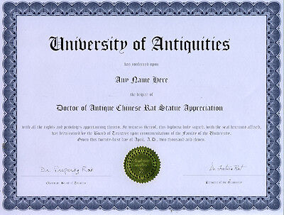 Doctor Antique Rat Statue Appreciation Novelty Diploma