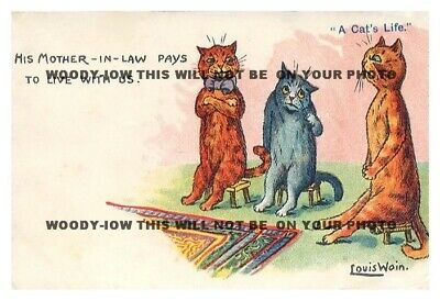 rp10192 - Louis Wain Cats - His Mother in Law - photo 6x4