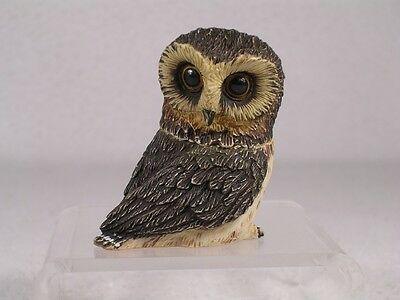 Harmony Kingdom Ball Pot Bellys / Belly 'Saw-Whet'  Owl  #PBZOW  New In Box