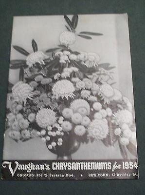 Vaughan's Chrysanthemums For 1954 - Sale Clearance