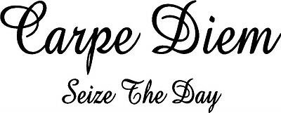 Carpe Diem Bumper Slogan Car Bike Window Stickers SBBU1
