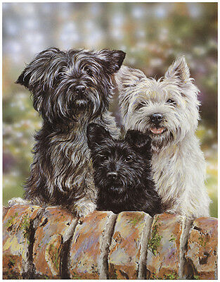CAIRN WESTIE PATTERDALE TERRIER DOG ART LIMITED EDITION PRINT - by Paul Doyle