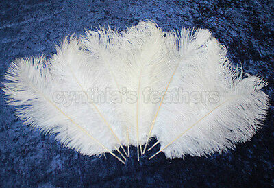 """32 Grade B 12-14"""" Snow White Ostrich Drab Plume Feathers Wedding, Millinery, NEW"""