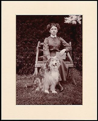 Bearded Collie Edwardian Lady And Her Dog Mounted Photo Print Ready To Frame