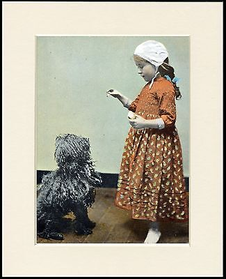 Hungarian Puli And Little Girl Charming Dog Print Mounted Ready To Frame