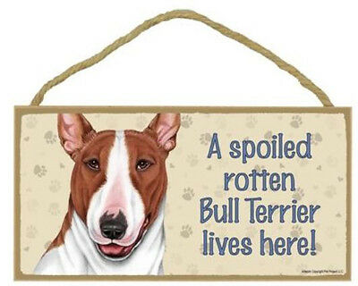 """Spoiled Rotten Bull Terrier Lives Here Sign Plaque 10"""" x 5""""  Brown White Dog"""
