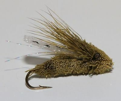 12 DRY Cicada TROUT FLIES for fly fishing rods