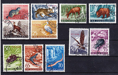 Trieste B 1954 - Sc# 93 - 103 Used Wildlife