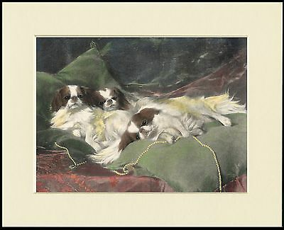 Japanese Chin Three Dogs Charming Dog Print Mounted Ready To Frame