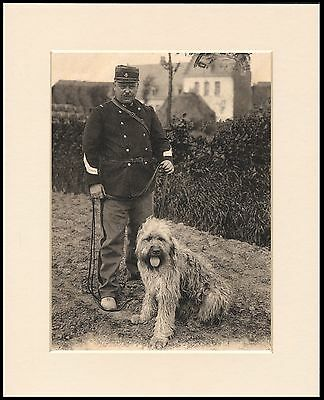 Briard Dog And Policeman Great Dog Print Mounted Ready To Frame