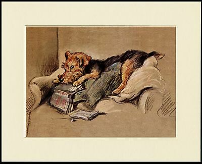 Welsh Terrier Dog And Torn Book Lovely Print Mounted Ready To Frame