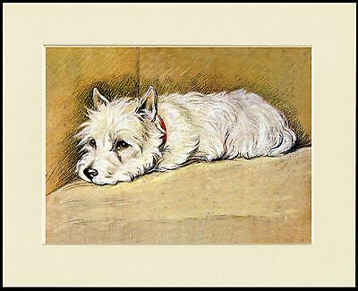 Westie West Highland White Terrier  Lovely Dog Print Ready To Frame