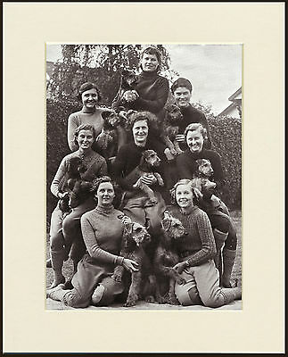 Airedale Terrier Dogs And Ardross Kennel Girls Dog Print Mounted Ready To Frame