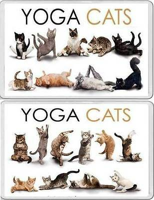 YOGA CATS Fun Novelty FRIDGE MAGNETS animals in yoga positions animal lover gift