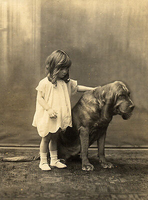 Bloodhound Charming Dog Greetings Note Card Beautiful Dog And Small Child