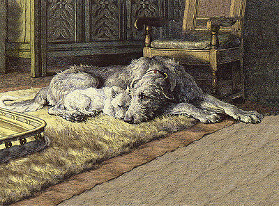 Irish Wolfhound & Westie Terrier By Fireside Charming Dog Greetings Note Card