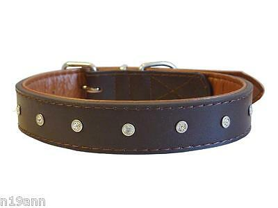New Diamante Brown Leather Dog Collar With Faux Leather Lining Treat Your Pet