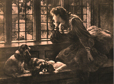 Cavalier King Charles Spaniel Dog Greetings Note Card Lady & Two Dogs At Window