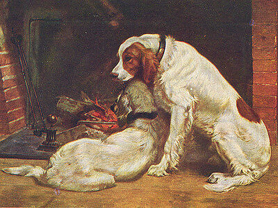 Irish Red And White Setter Dog Greetings Note Card Two Dogs By The Fire Side