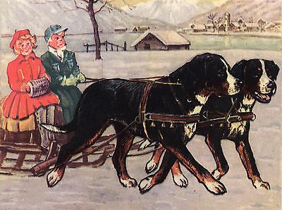 Bernese Mountain Dogs Pulling Sled Dog Greetings Note Card