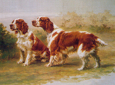 BRITTANY SPANIEL CHARMING DOG GREETINGS NOTE CARD TWO DOGS IN RURAL SETTING