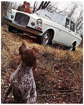 1969 Volvo 164 Automobile Photo Poster zc7303-BNJYEM
