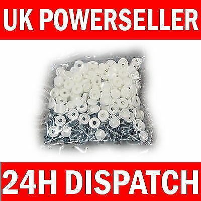 100 Pack Number Plate Plates Metal Screws & White Caps