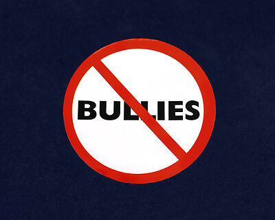 Lot of 24 No Bullies Magnets