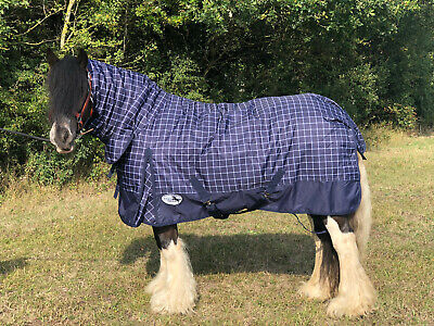Equidor Montana Medium Weight 220G Fill Combo Turnout Horse Rug Fixed Neck