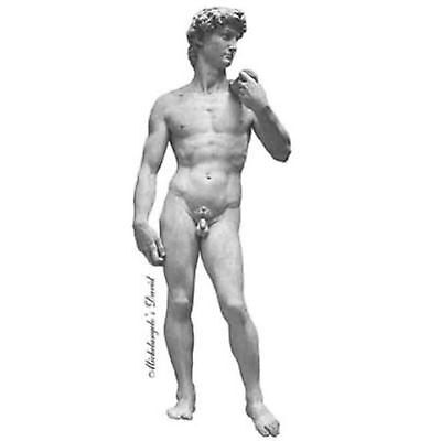 Michelangelo's David fitted ironing board cover