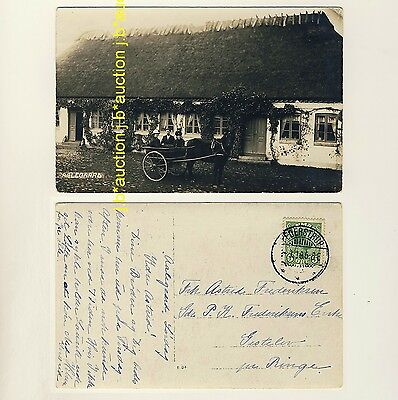 Denmark AALEGAARD THATCHED HOUSE & HORSE-DRAWN CARRIAGE Kutsche * 1910s Photo PC
