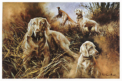 WEIMARANER DOG FINE ART LIMITED EDITION PRINT by the late Mick Cawston SOLD OUT