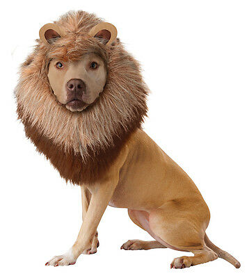 California Costume Lion Dog Pet Costume