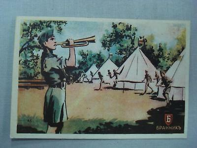 Wwii German Ally Youth Scout Brannik Postcard Very Rare