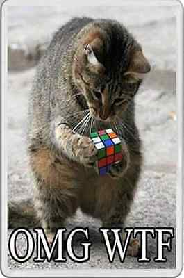 FRIDGE MAGNET Adult Humour Cat trying to solve the Rubik's cube very funny WTF