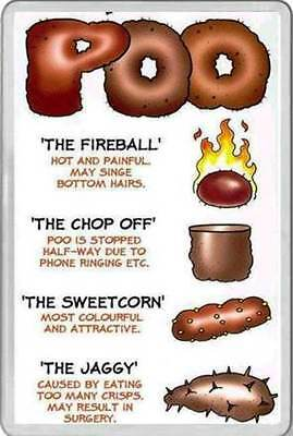 FRIDGE MAGNET Adult Humour Fun design Bristol Stool Chart check your poop