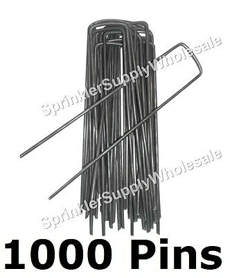 "1000 DeWitt Anchor Pins APB1 6""x1"" Sod Staples Frost Cloth Weed Mat Dog Fence"