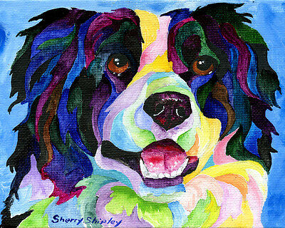 BORDER COLLIE 8X10  DOG Colorful Print from Artist Sherry Shipley