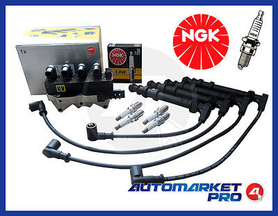 Kit Accensione Bobina Cavi Candele Fiat Multipla 1.6 1600 Benzina Natural Power