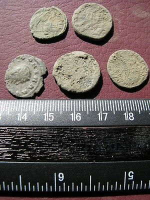 5 Ancient Roman coins + 4 oz. Mint State Restoration Coin Cleaner M155