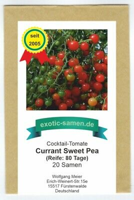 Tomate - Cherry-Tomate - Currant Sweet Pea (20 Samen)