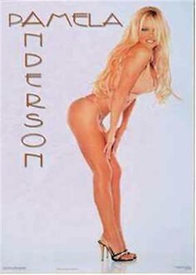 PAM ANDERSON POSTER ~ WHITE 22x34 Pinup Pamela Lee