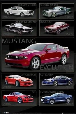 FORD MUSTANG POSTER ~ SHELBY EVOLUTION 24x36 Autos Car 0567