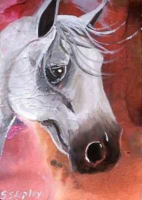 ARABIAN ACEO HORSE Original acrylic and Gouache painting by Sherry Shipley