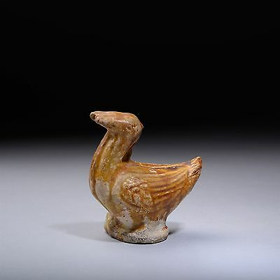 Ancient Chinese Tang Dynasty Pottery Duck Figure - 618 AD