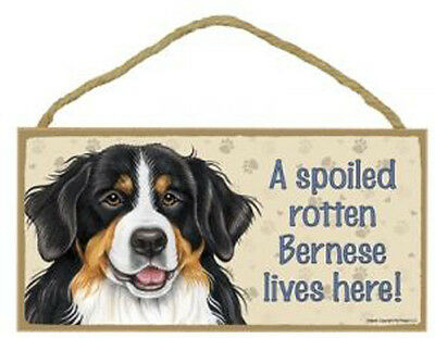 Spoiled Rotten Bernese  Wood Sign Plaque Dog