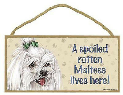 "Spoiled Rotten Maltese Lives Here  Sign Plaque Dog 10"" x 5""  long hair w/ bow"