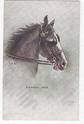 """Antique Horse Post Card Initialed by Artist LED """"Thorough-Bred""""      ##"""