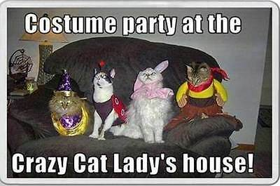 fridge magnet COSTUME PARTY AT CRAZY CAT LADY HOUSE Cats dressed up Fun gift