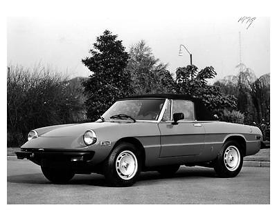 1979 Alfa Romeo Spider Automobile Photo Poster zca0257